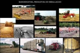 ranghinatura_e_pressatura